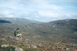 Udsigten over fjeldheden ovenfor Alesvagge  under en af mine første vandreture i Lappland