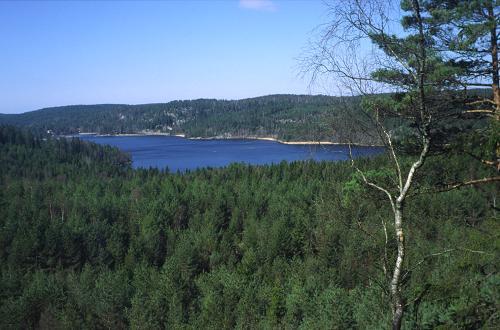 På vejen gennem Svartedalen nyder man udsigten over en række større skovsøer, her for eksempel Håltesjön.