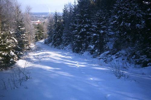 Nedstigning mod Tranemo over den dybt snedækkede Bergsås.