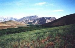De lange bjergrygge i Zagros bjergene veksler med grønne og frodige dalgange